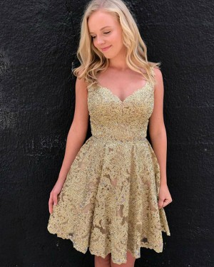 Elegant V-neck Gold Lace A-line Pleated Homecoming Dress HD3067